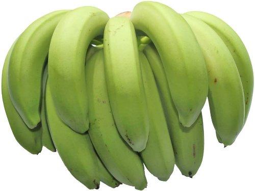 【期間限定】 沖縄バナナ (三尺・五尺・八尺) 予約販売 約1.3kg相当分 数少ない国産バナナ 甘みと酸味のバランスが絶妙で濃厚な風味