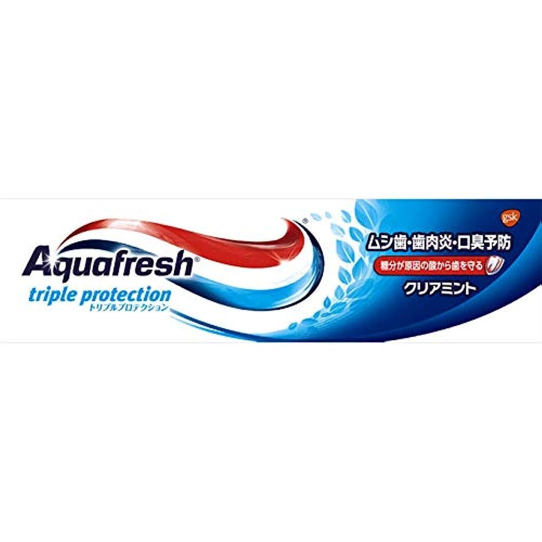 エロチック減少静かなアクアフレッシュ クリアミント 35g