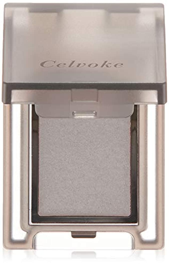 割れ目雰囲気将来のCelvoke(セルヴォーク) ヴォランタリー アイズ 全24色 02 マットグレー