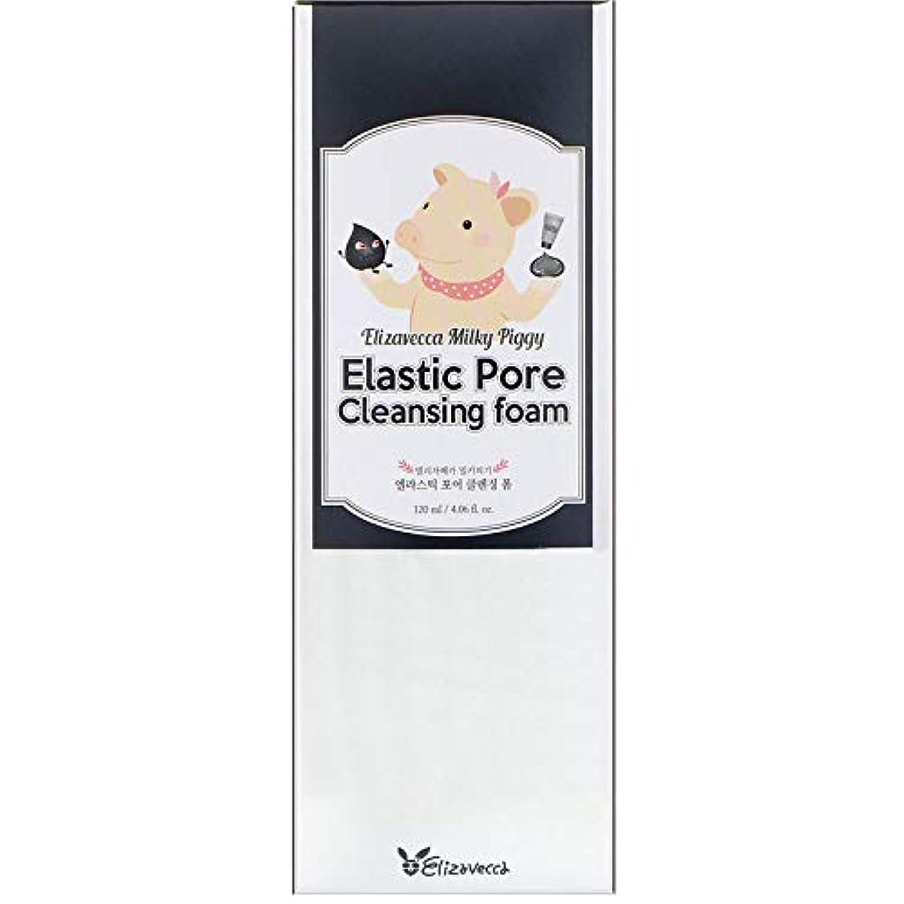 雄弁家がっかりした取るELIZAVECCA Elastic Pore Cleansing Foam (並行輸入品)