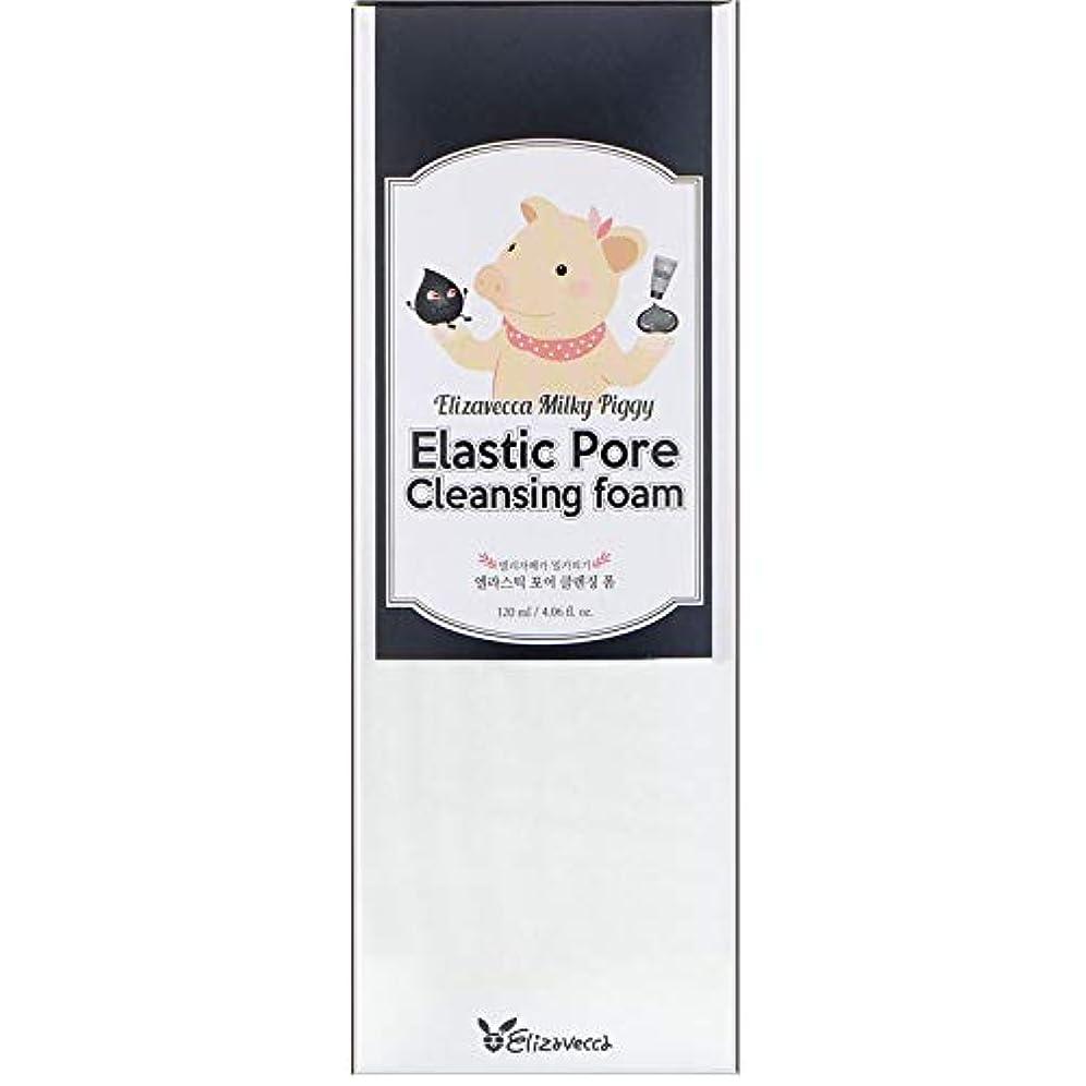 ベルベット美徳犯すELIZAVECCA Elastic Pore Cleansing Foam (並行輸入品)