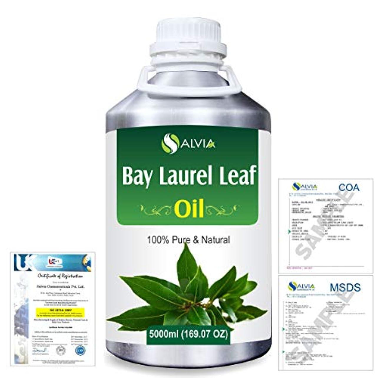 連帯ベール謎めいたBay Laurel Leaf (Laurus nobilis) 100% Natural Pure Essential Oil 5000ml/169fl.oz.