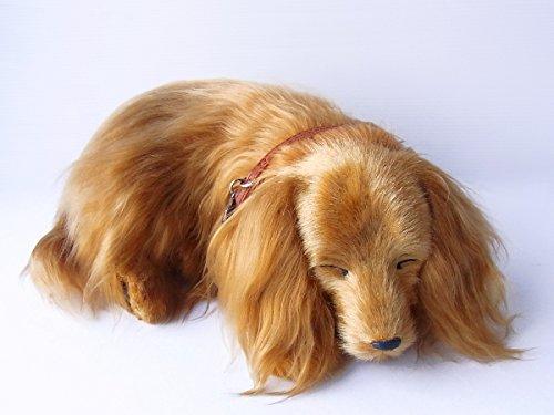 本物そっくりに眠る犬のぬいぐるみ|パーフェクトペット|ダックス(ロングコート)