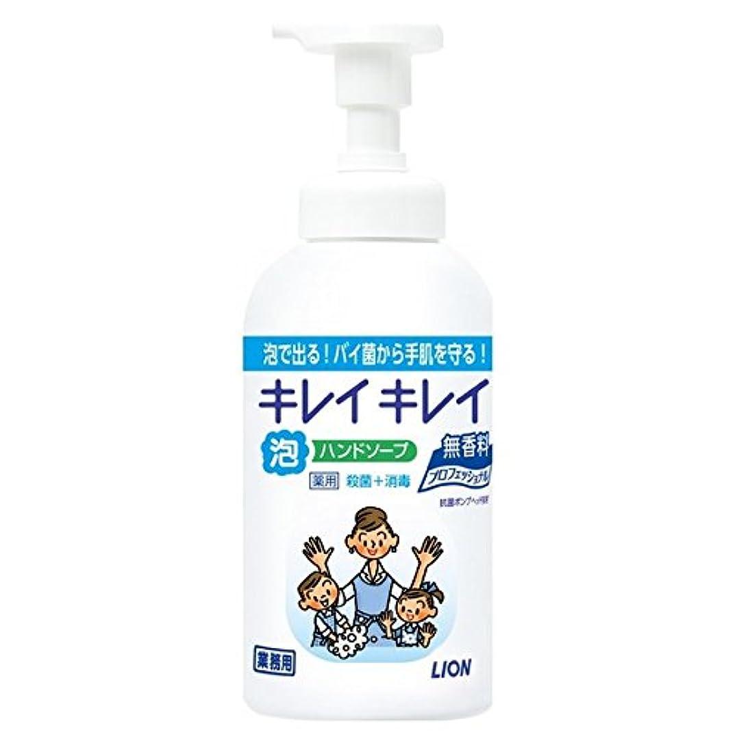正確名誉あるキャップライオン キレイキレイ薬用泡ハンドソープ 無香料 550ml×12本入