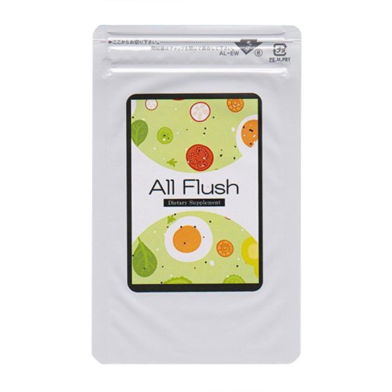 ロゴ年齢調整するオールフラッシュ(ALL FLUSH)