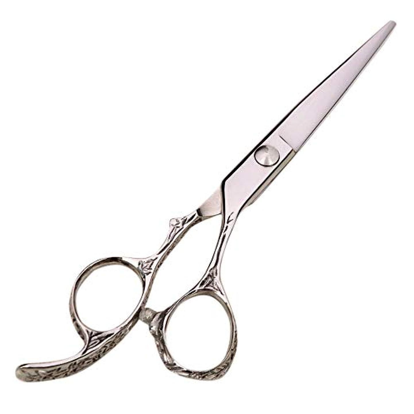 ポイント縮れた期待するGoodsok-jp 6インチプロフェッショナルハイエンド理髪はさみヘアサロン理髪ツール (色 : Silver)