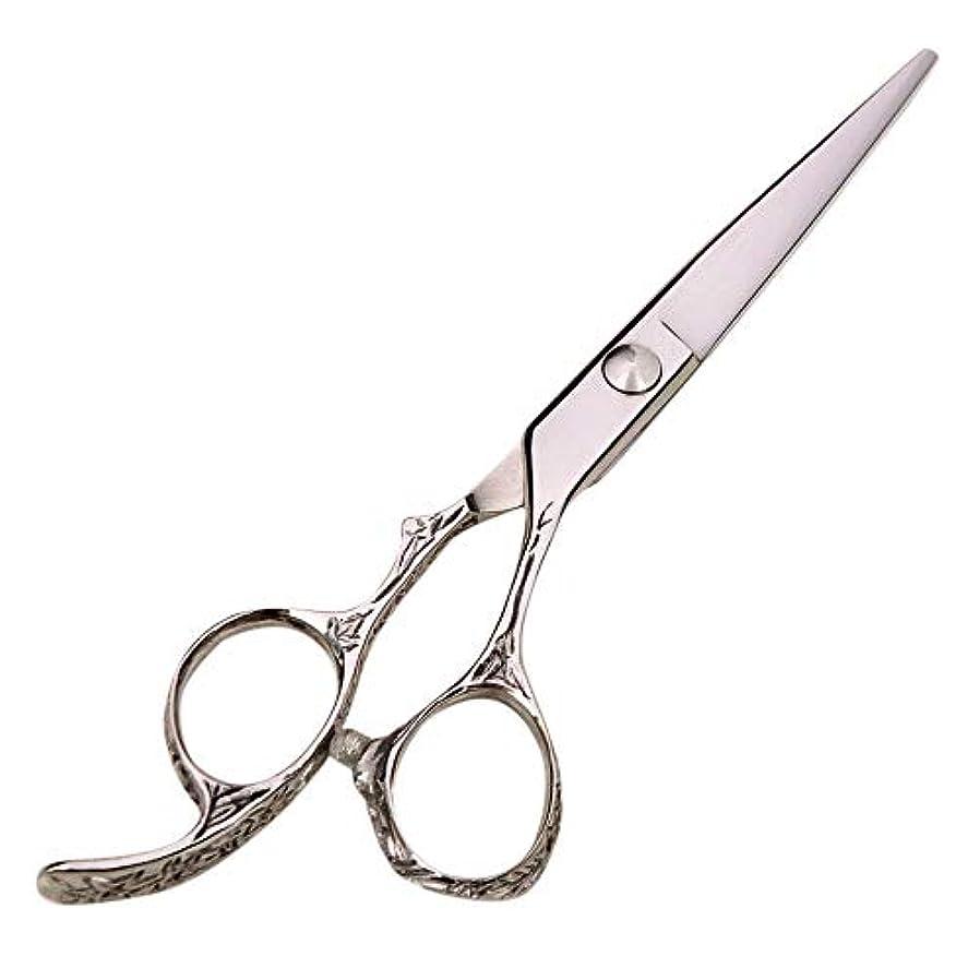ロッカー記者辛い6インチハイエンドプロフェッショナル理髪はさみ、美容院理髪ツール ヘアケア (色 : Silver)