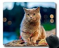 マウスパッド、ペットデフォーカス猫マウスパッド、コンピュータcat203用マウスマット