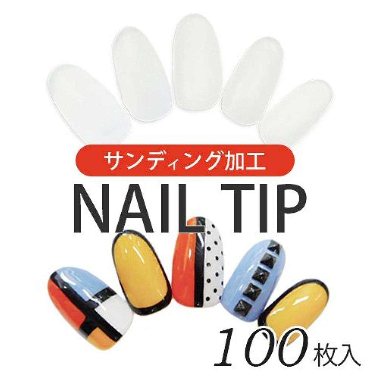 使いやすい少量パックネイルチップ[クリア]少量セット100枚入り(10サイズ?各10枚) サンディング加工済 ジェルネイル ネイルアート