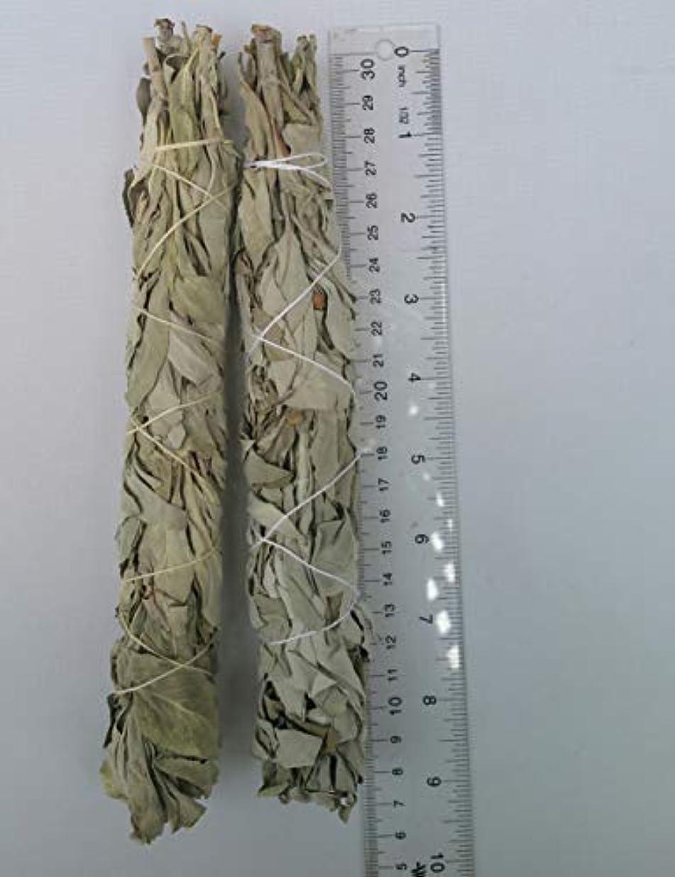 砦押し下げるいちゃつくThe Better Scents カリフォルニアホワイトセージスマッジスティック 高品質サルビアアピアナ 約2× 長さ7インチ - 8インチ 幅1 1/4インチ スマッジスティック