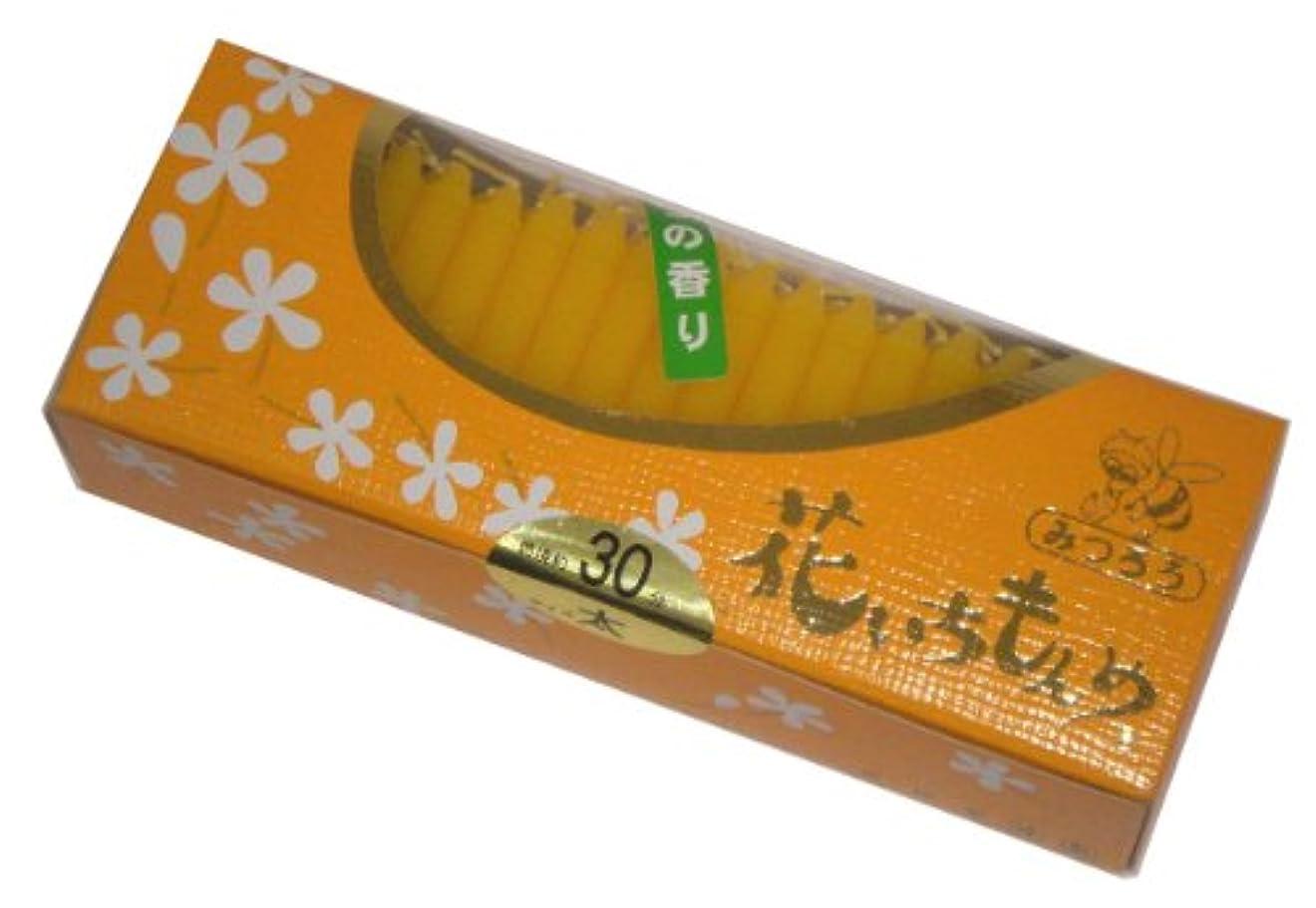 ナンセンス保護する佐藤油脂のローソク 花いちもんめ みつろう 約100本 30分