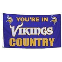 Minnesota Vikings 3x 5インチ国デザインフラグ