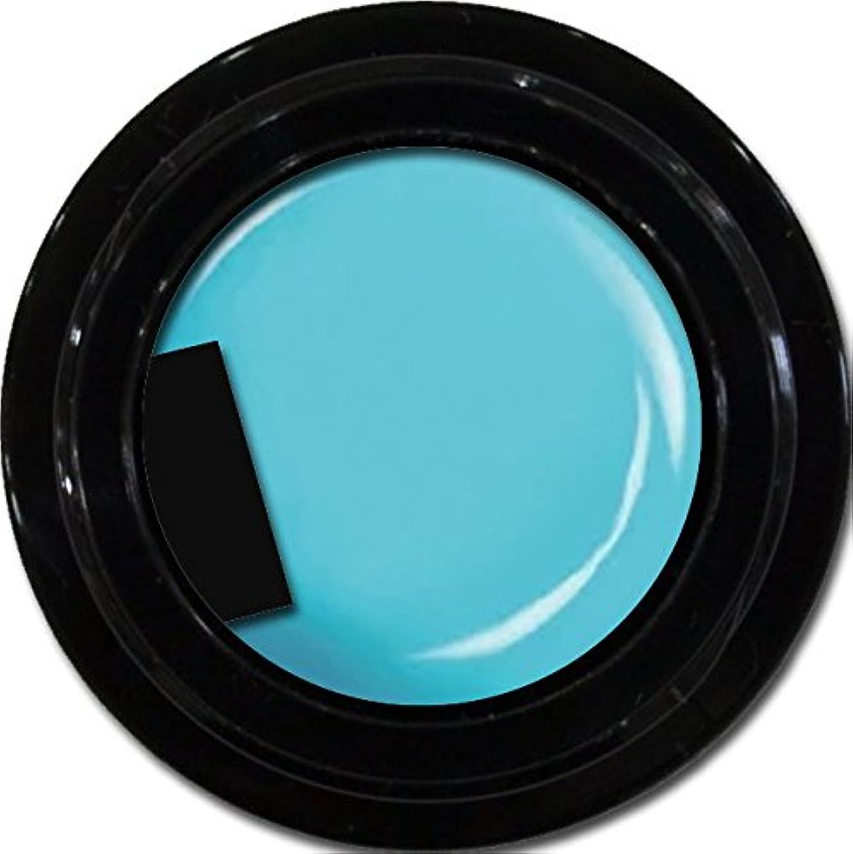 薬理学バレエ違反するカラージェル enchant color gel M706 Turquoise 3g/ マットカラージェル M706 ターコイズ 3グラム