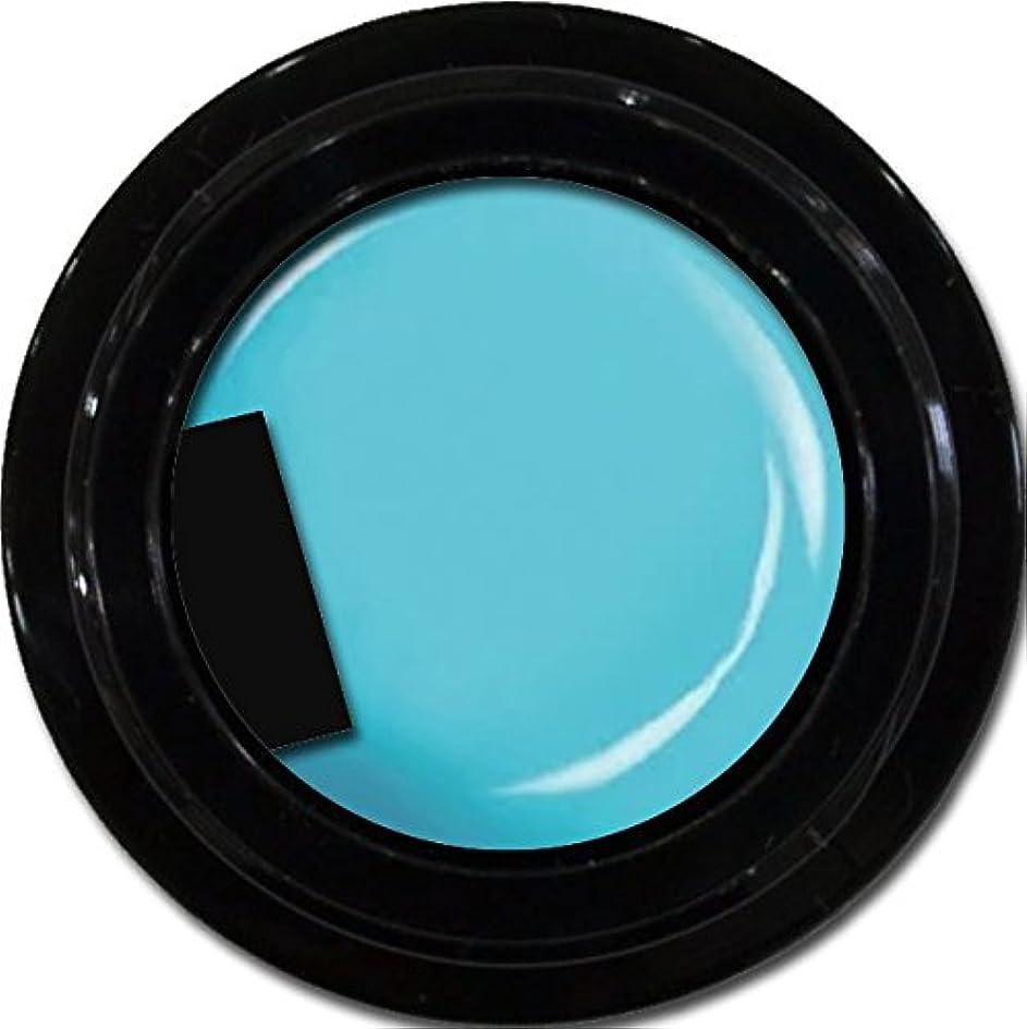おめでとう円形チューインガムカラージェル enchant color gel M706 Turquoise 3g/ マットカラージェル M706 ターコイズ 3グラム
