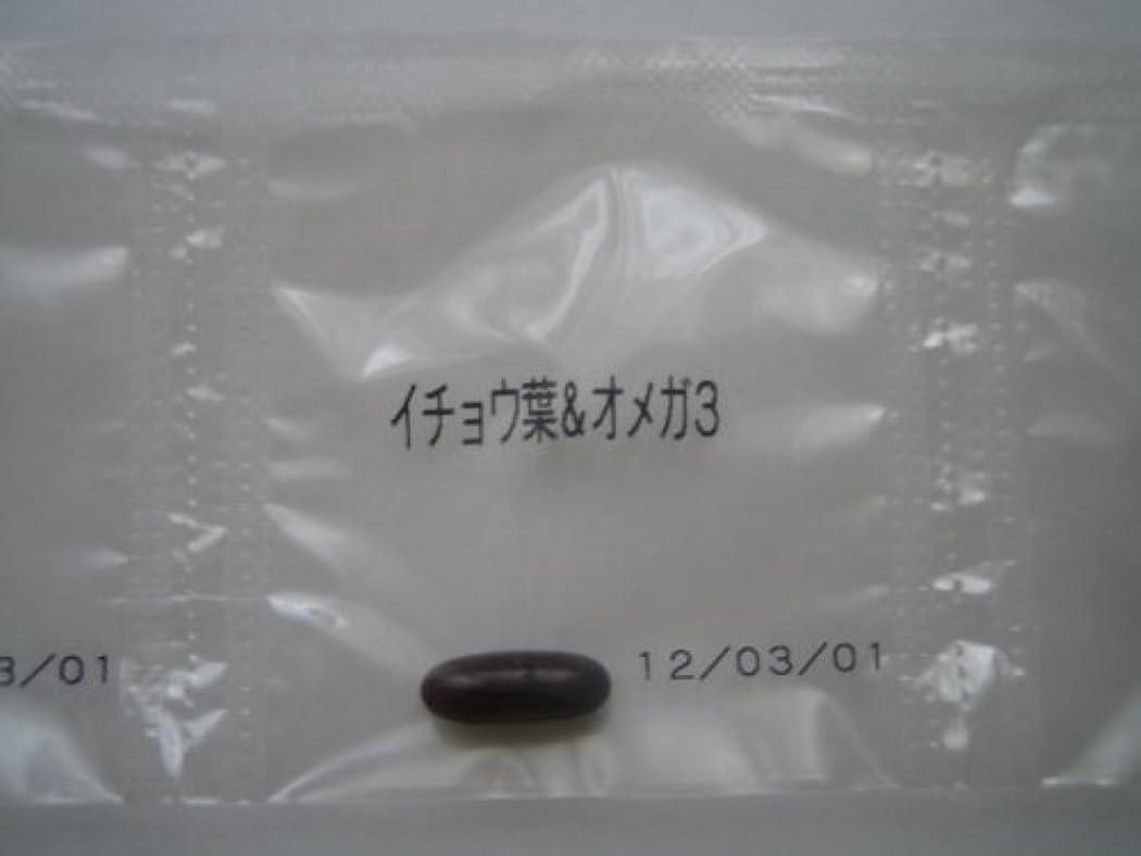 防衛不健康凶暴なイチョウ葉&オメガ3 9粒~ワカサプリ~オーダーメイドサプリ