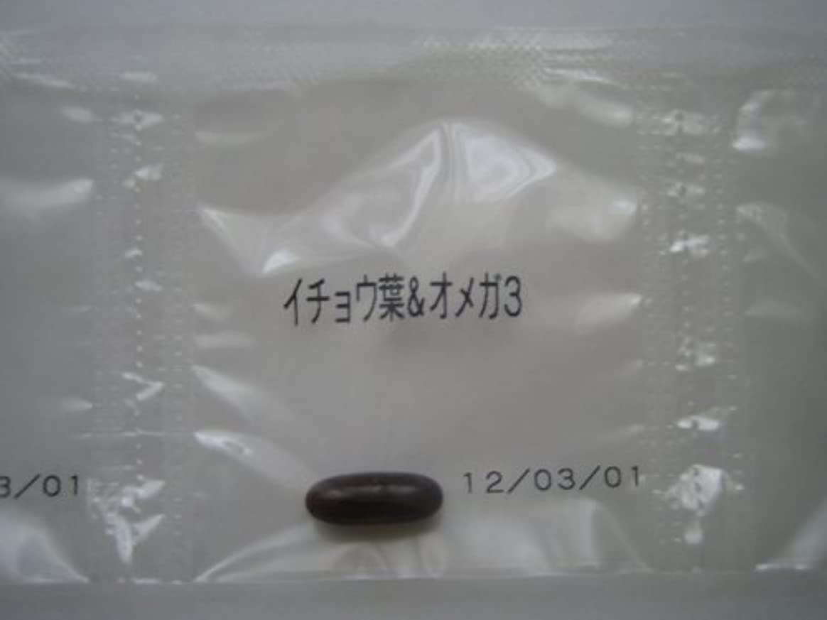 生命体インテリア束ねるイチョウ葉&オメガ3 9粒~ワカサプリ~オーダーメイドサプリ