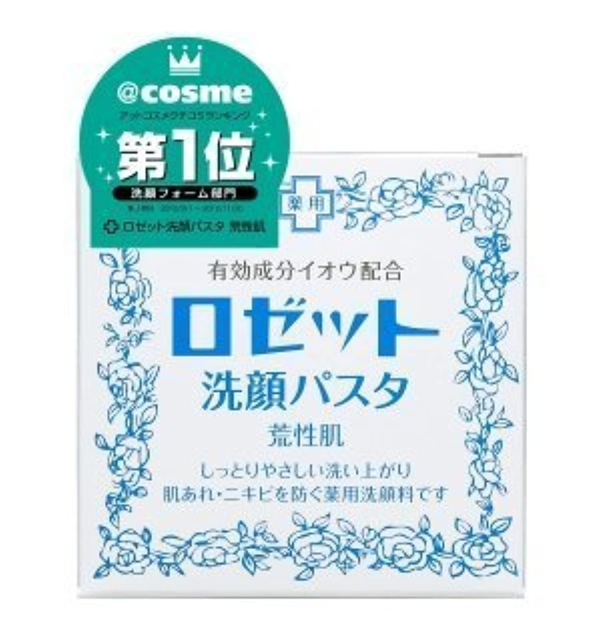 ペルメル好む惨めなロゼット 洗顔パスタ 荒性肌 90g (医薬部外品) × 10個セット