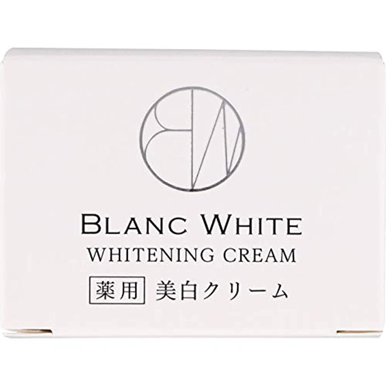 ビバペインティングポータブルブランホワイト ホワイトニング クリーム 45g