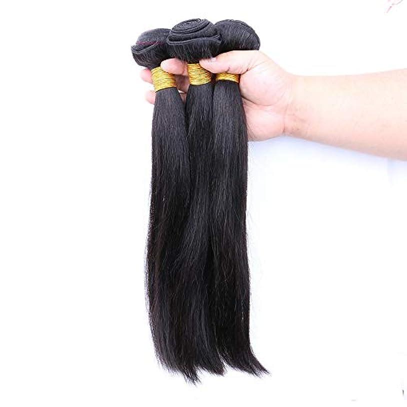 算術誰違うHOHYLLYA ブラジルのストレート人間の髪の毛の束シルキーストレートバージン人間の髪織りエクステンションナチュラルブラック複合毛レースのかつらロールプレイングかつら (色 : 黒, サイズ : 12 inch)