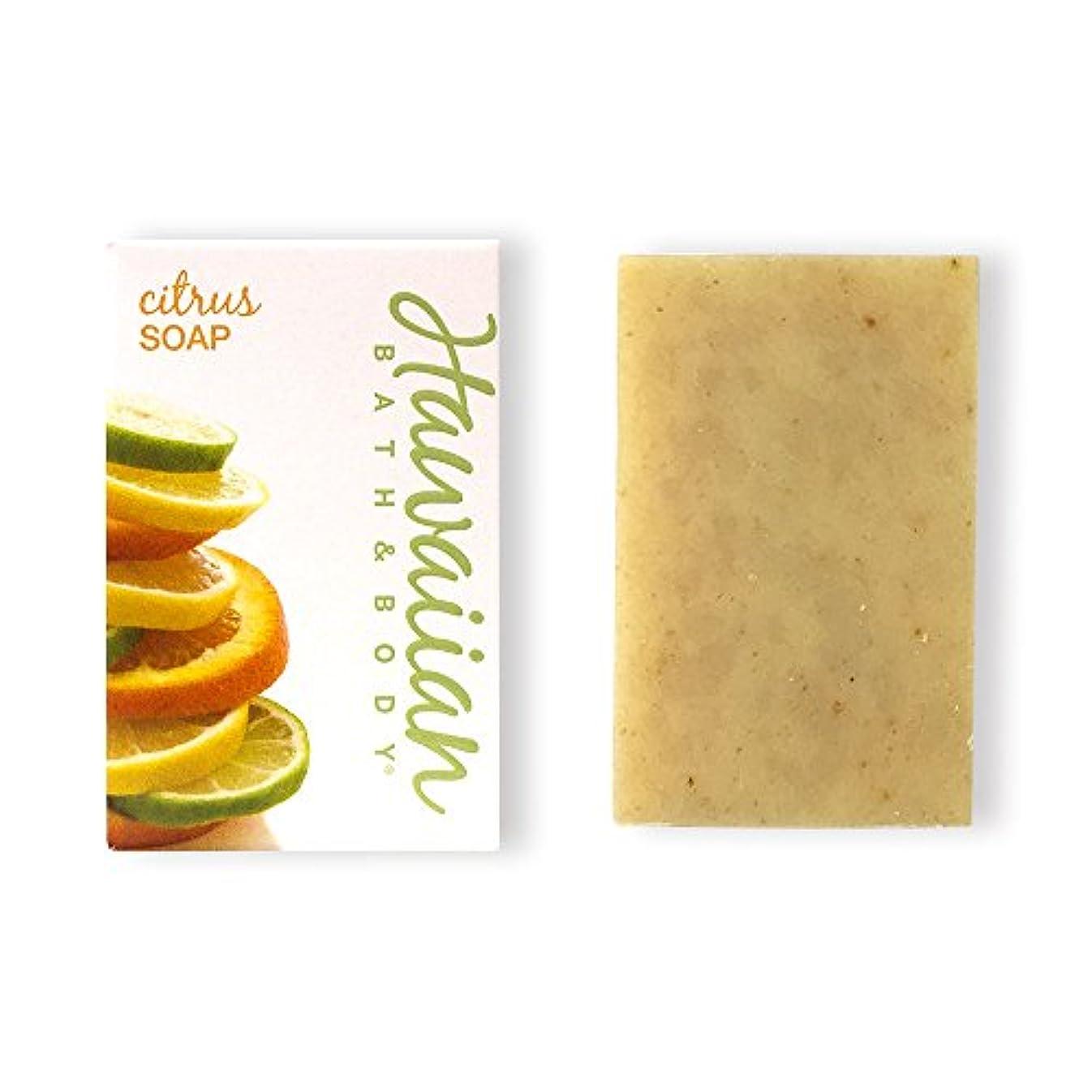 磨かれたスカートカーテンハワイアンバス&ボディ ハワイアン?シトラスソープ( Citrus Soap )
