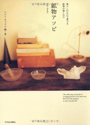 鉱物アソビ 暮らしのなかで愛でる鉱物の愉しみ方 (P-Vine Books)の詳細を見る