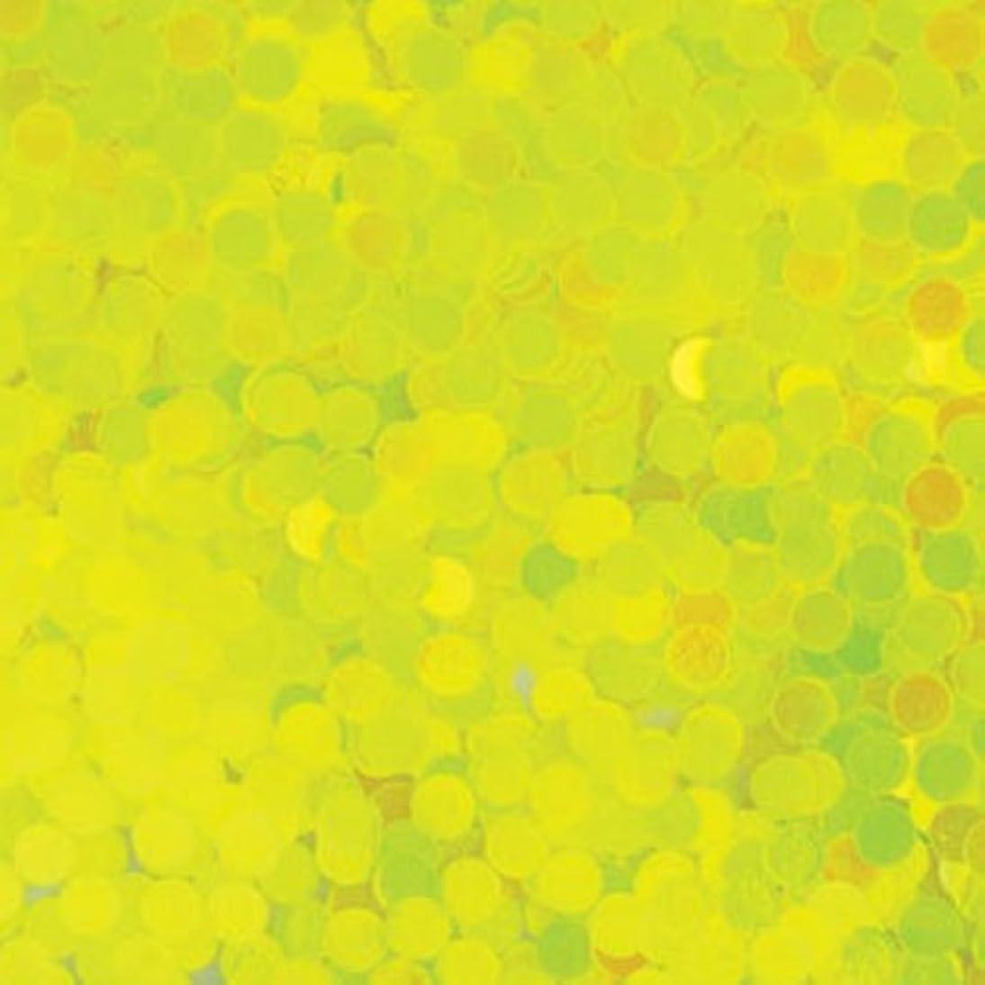 詩人糸持つピカエース ネイル用パウダー 丸蛍光 2mm #446 レモン 0.5g