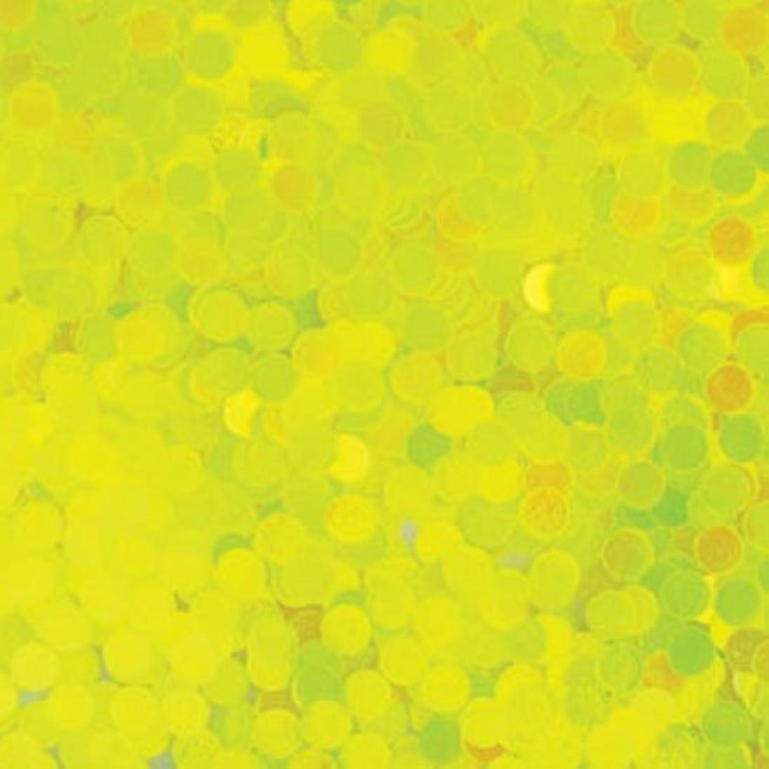 請う運営動力学ピカエース ネイル用パウダー 丸蛍光 2mm #446 レモン 0.5g
