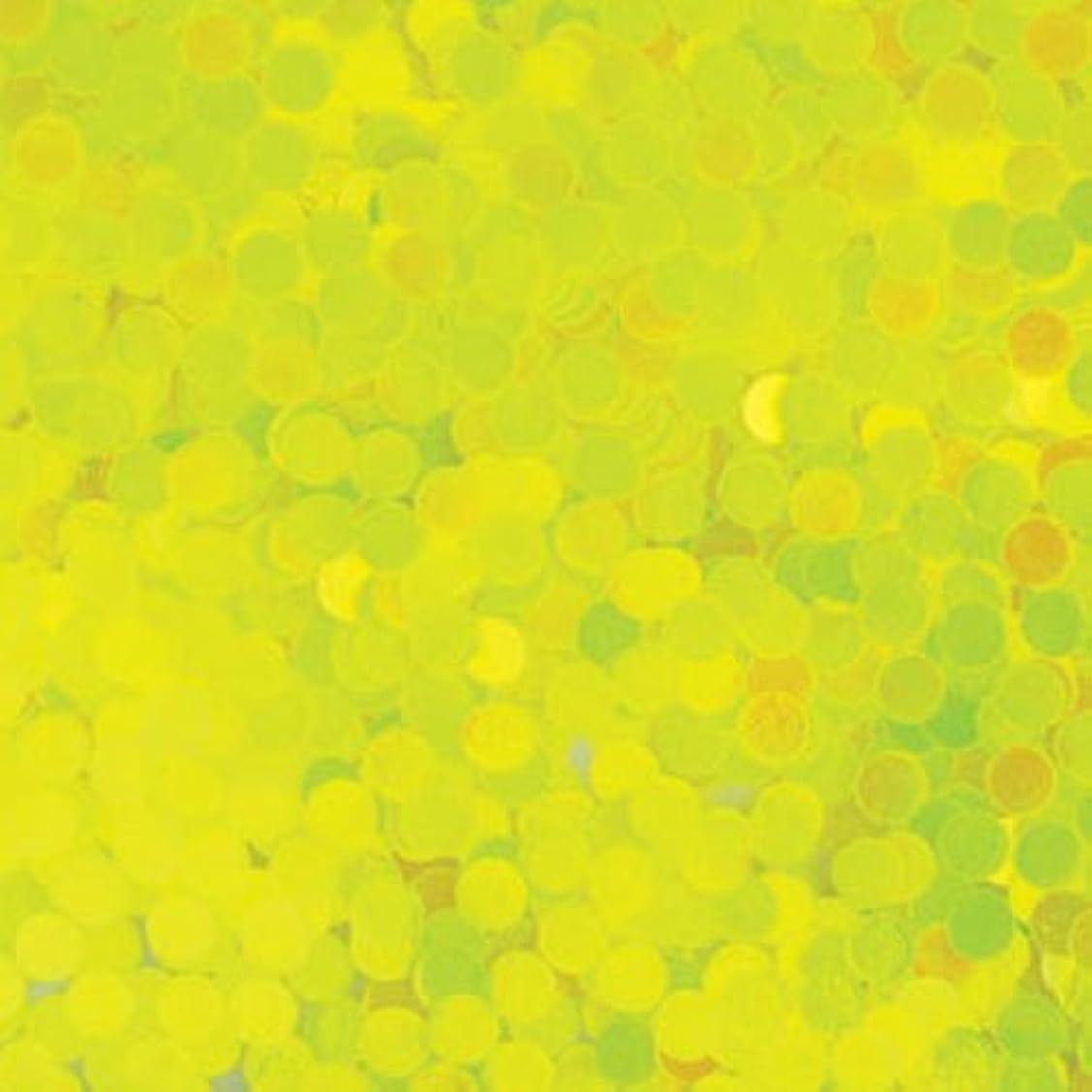 昆虫を見るに向けて出発忘れるピカエース ネイル用パウダー 丸蛍光 2mm #446 レモン 0.5g