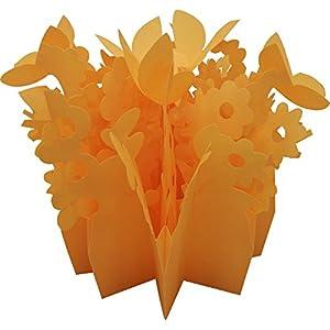 ミクニ ネイチャーフォレスト 交換フィルター オレンジ 65E-02 エコ加湿器専用交換フィルター 交換対応本体-ミスティガーデン、ミスティガーデン2nd、ミスティアート