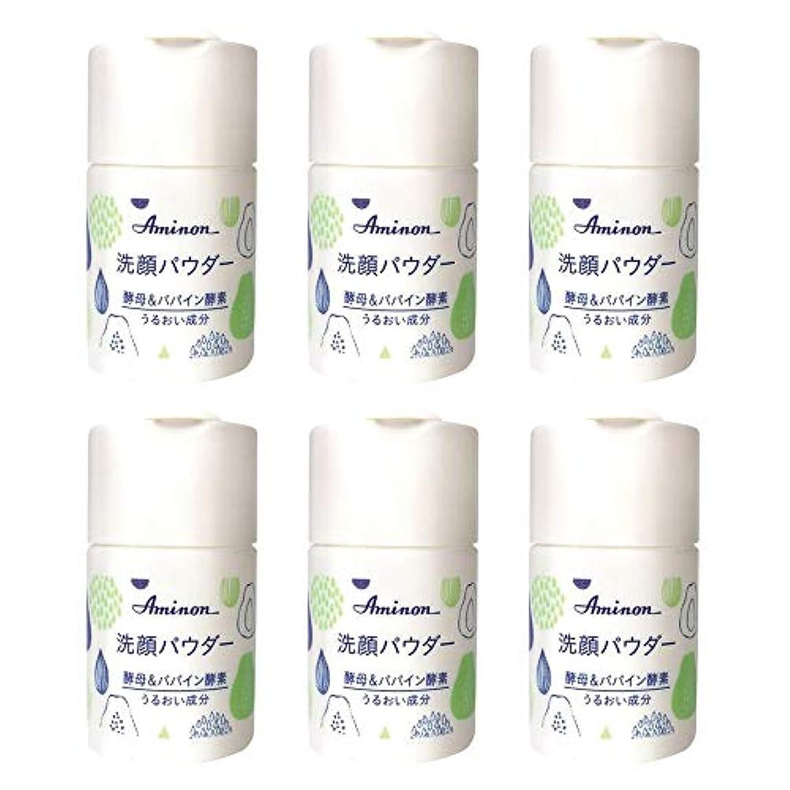 おとうさん知性する必要があるアミノン パパイン酵素配合 洗顔パウダー 50g (6本セット)