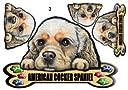 犬ステッカー アメリカンコッカースパニエル3 マグネット 車/車用