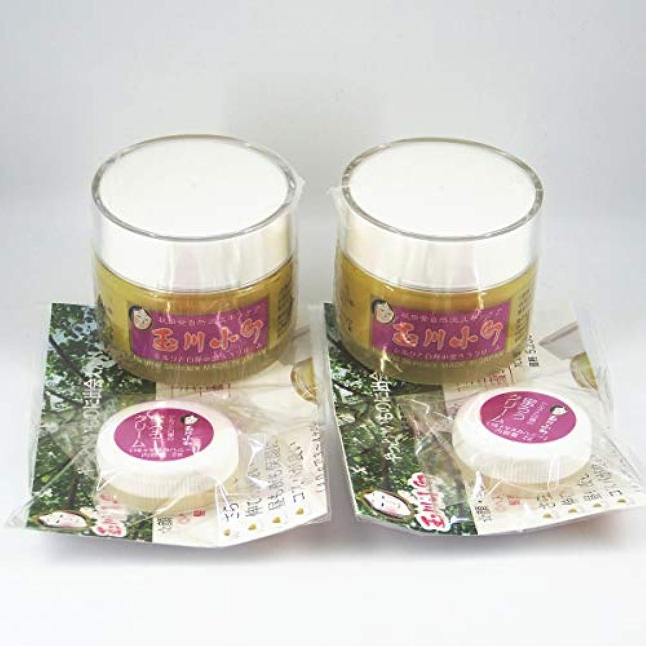 高度識字山積みの玉川小町シルクと白樺の蜜ろうクリーム 2g×2個付お得セット