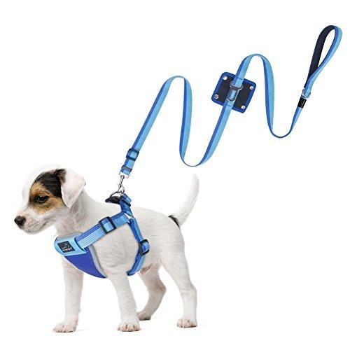 犬 ハーネス リードセット, PETBABA 犬用 安全 帯 ハーネス シートベルト 車用 引っ張り防止 大型/中型/小型犬 サイズ調整可 飛びつく防止 ペット用品 ブルー (S)