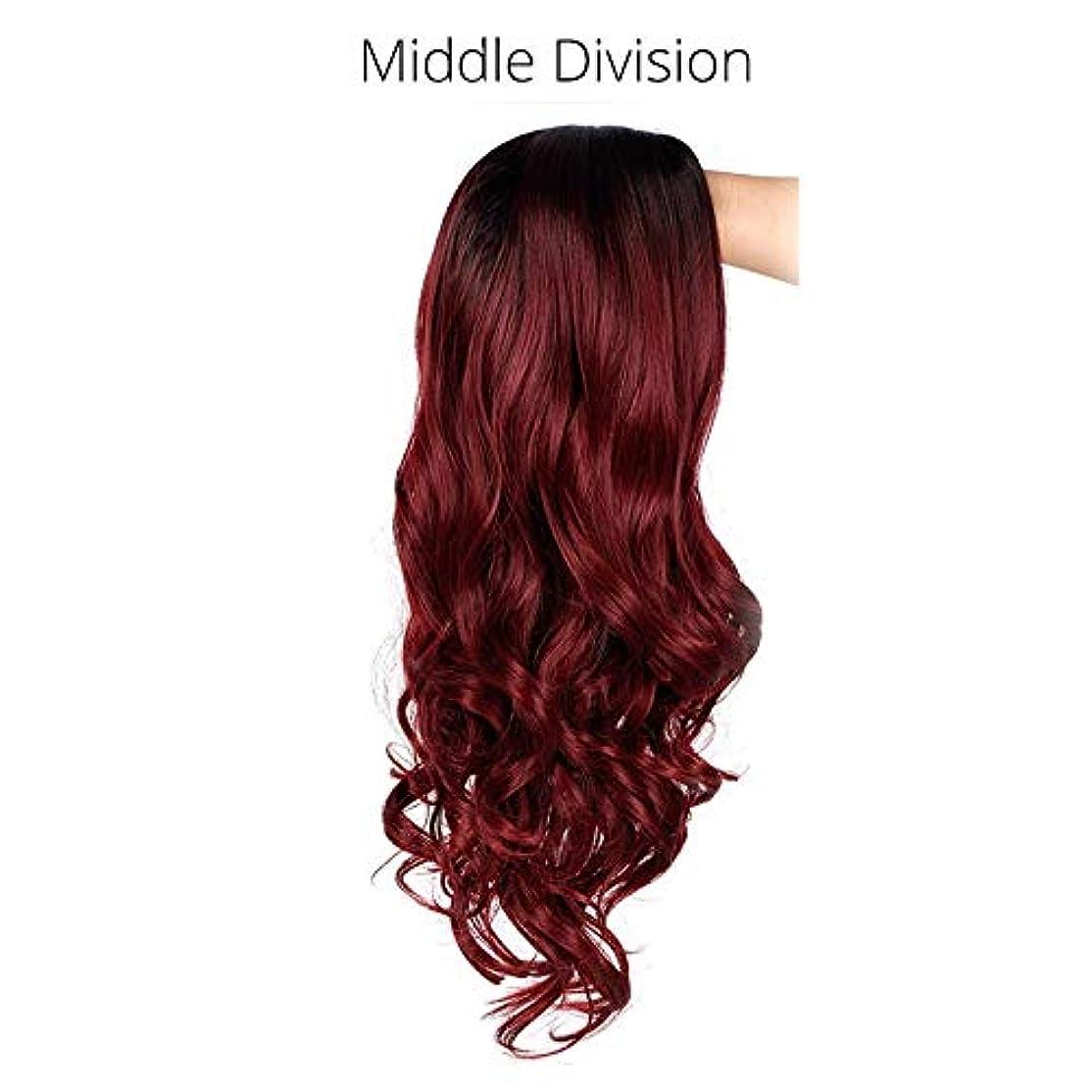 間に合わせ考えるギャロップ美しく オンブル長い波状のブロンドのかつら、合成かつら女性グレーホワイトブラックレッドブラウンブロンドのかつらグルーレス髪コスプレAISI BEAUTY (Color : R2 118 39A, Stretched Length : 24inches)