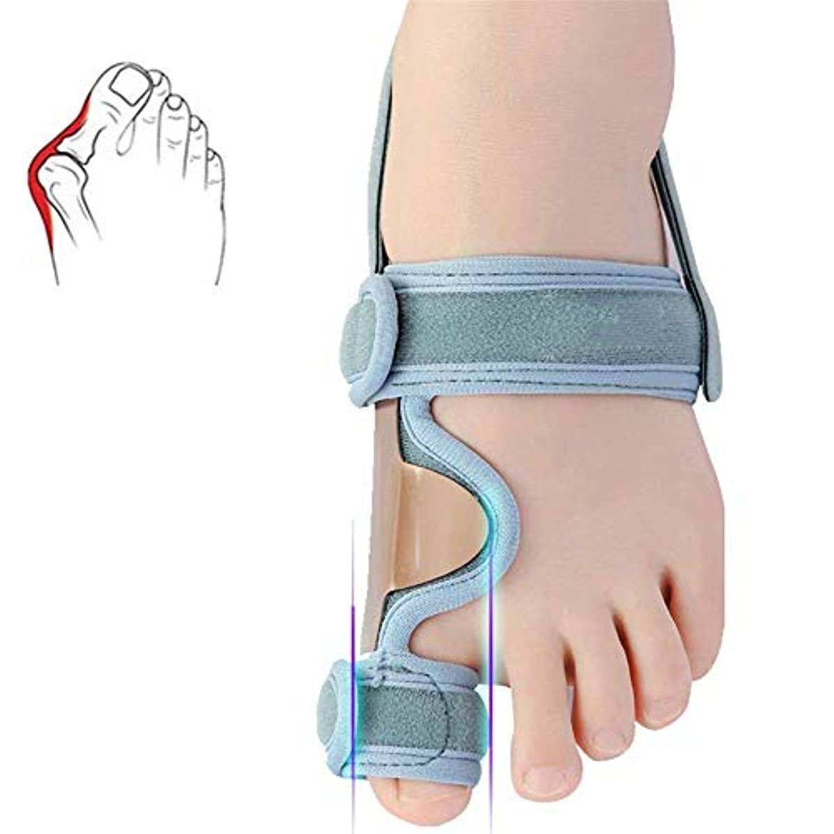再生可能定常シネウィNighttime Bunion Corrector Toe Straightener、夜用、1組の整形外科用Bunion Splintsビッグトゥストレイテナー、Bunion Splint Protectorバニオンブレース...