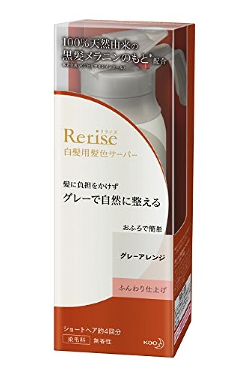 奇跡倉庫再生リライズ 白髪染め グレーアレンジ (自然なグレー) ふんわり仕上げ 男女兼用 本体 155g