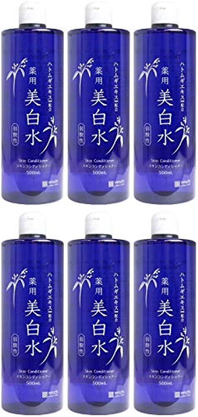 できないぼんやりした十【まとめ買い】雪澄 薬用美白水【×6個】