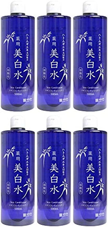 欺く構想する干渉【まとめ買い】雪澄 薬用美白水【×6個】