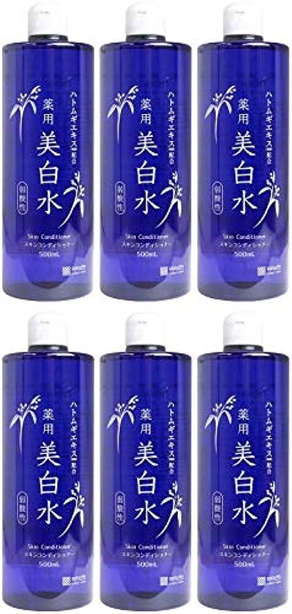 金額ファセット嵐が丘【まとめ買い】雪澄 薬用美白水【×6個】