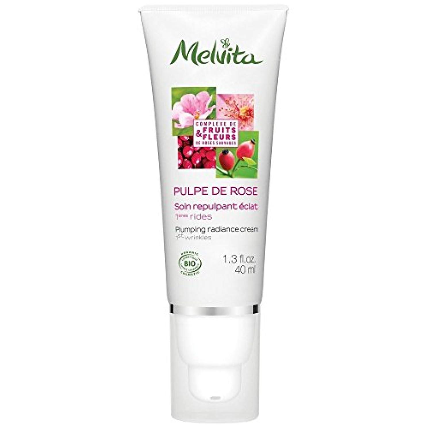 頑固な黙認する奨励[Melvita] メルヴィータ膨化輝きクリーム、40ミリリットル - Melvita Plumping Radiance Cream, 40ml [並行輸入品]