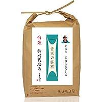 青森県産 葛西拓美さんのお米 特別栽培米 白米 青天の霹靂 平成29年度産(そのまま米びつとして使えるクラフト袋仕様)×5kg