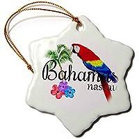 3dRose Macdonald Creative Studios - 島 - バハマナッソー・カリビアンのお土産、トロピカルパロットとフラワー。 - オーナメント。 3 inch Snowflake Porcelain Ornament orn_299249_1