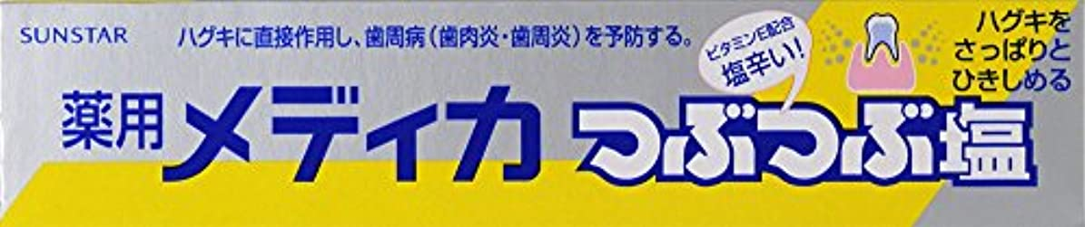 社員とんでもない未来サンスター 薬用メディカつぶつぶ塩 170g (医薬部外品)