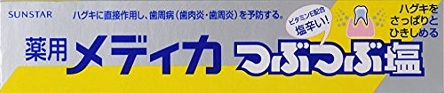 結婚式ビール上向きサンスター 薬用メディカつぶつぶ塩 170g (医薬部外品)