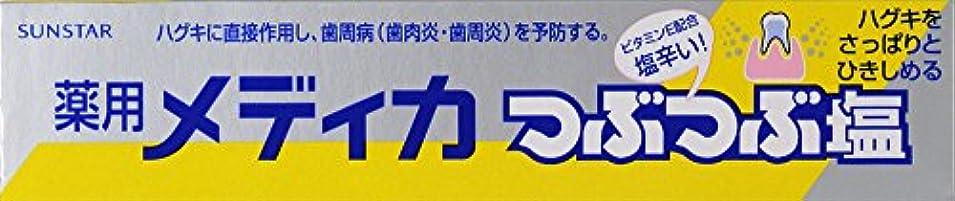 歩行者考古学者通知サンスター 薬用メディカつぶつぶ塩 170g (医薬部外品)