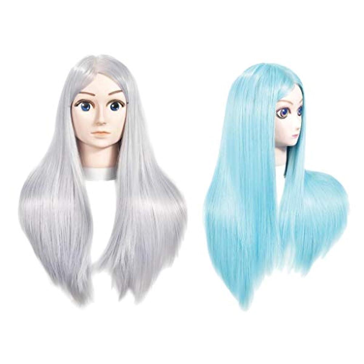 ヒューズ動持っているToygogo サロン理容室用の長いストレートの髪を持つ2x女性マネキンヘッドトレーニングヘッドダミーモデル