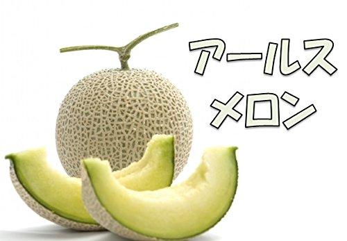鹿児島県産 アールスメロン 約4kg 1箱:2玉〜3玉