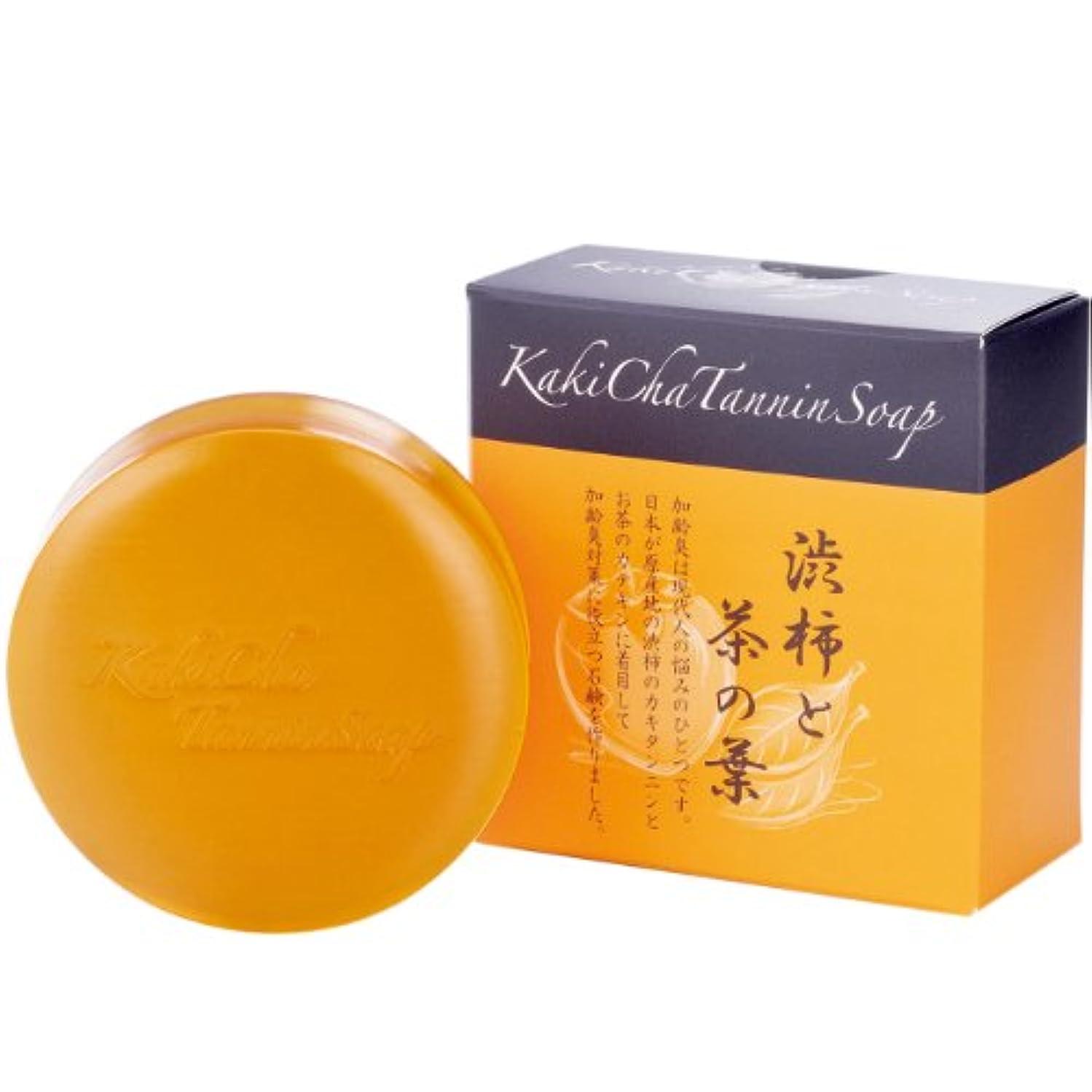 素晴らしき小間証拠リフレ 柿茶タンニンソープ <35023>