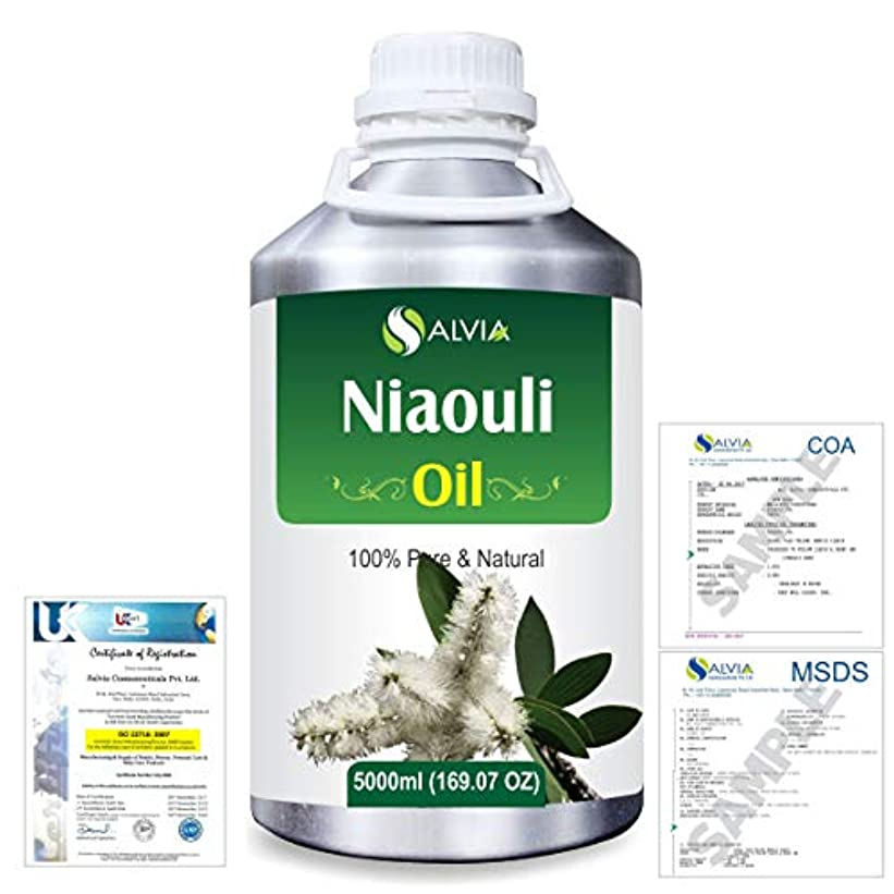 Niaouli (Melaleuca Viridiflora) 100% Natural Pure Essential Oil 5000ml/169fl.oz.