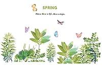 【Woliwowa】 ウォールステッカー 春が来た グリーンと 蝶々 2枚セット [並行輸入品]
